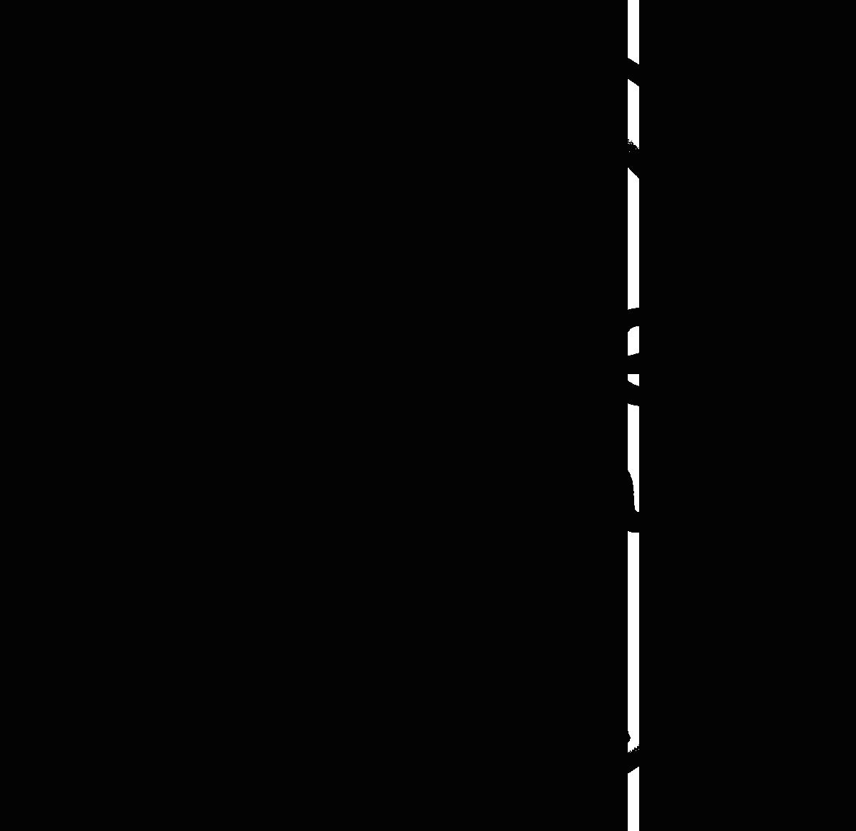 dave-christina_day