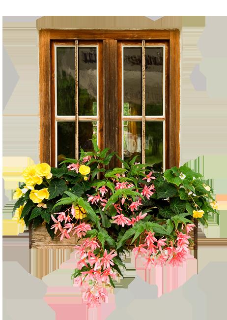 Teleflora E-Florist
